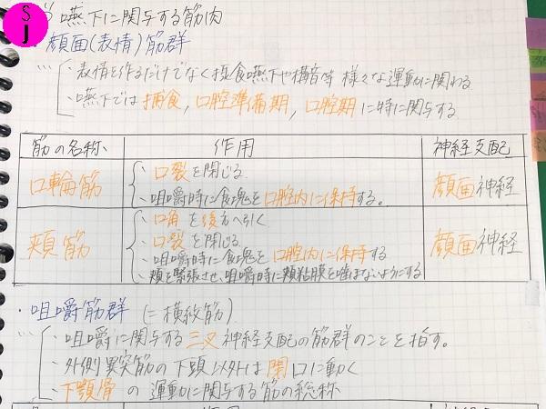 大学生の定期試験事情① ~国家資格取得を目指す学生Ver.(言語聴覚士)~